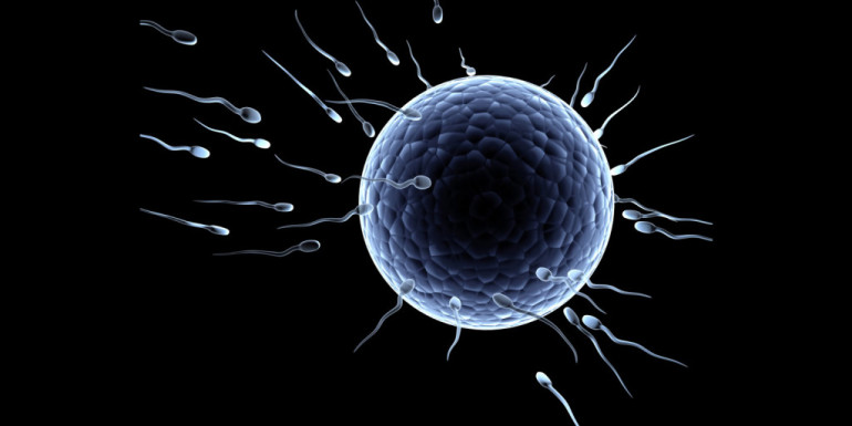 7 Most valuable tips to improve your Sperm Quality