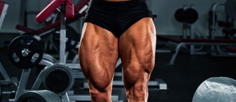 Svelte_Toned_Legs